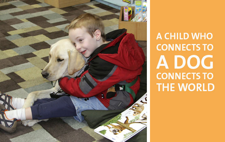 Best Companion Dog For Autism