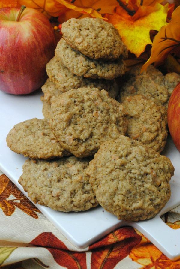 oatmeal apple spice