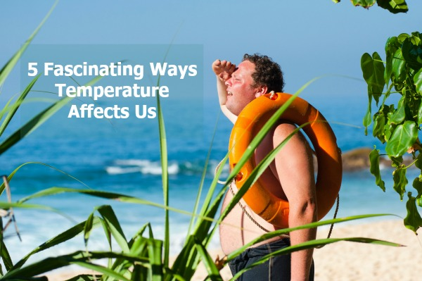 temperature affects